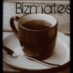 bizmates(ビズメイツ)体験ビジネス英語の感想口コミ【レベルチェックは?】